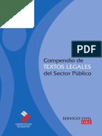 2009 Compendio Textos Legales Del Sector Publico