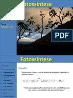 fotossintese quimiossintese