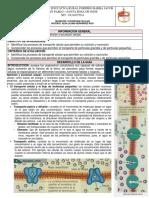 7° Guía Nutrición y excreción celular.