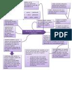 Mapa Mental Registro de Cuentas
