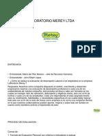 PROYECTO MEREY