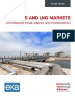 US Gas and LNG Markets - Continuing Challenges are Forecasted