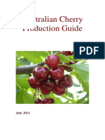 Australian Cherry Production Guide.pdf