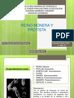 BIOLOGIA BACTERIAS 4.pptx