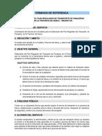 PLAN REGULADOR DE TRANSPORTE