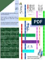 Crucigrama Modulo Convivencia y Seguridad Ciudadana