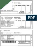 Formato-710108(1).pdf