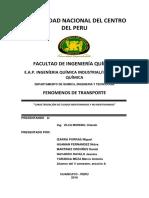 infrome-de-fluidos-newtonianos.docx