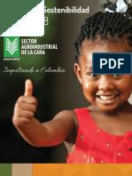 INFORME DE SOSTENIBILIDAD 2016 - 2017   - ASOCAÑA.pdf