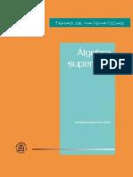 Álgebra superior I, 2011 - Antonio Lascurain Orive.pdf