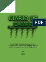 DIARIO DE CAMPO ARCHIVO(1)(1)