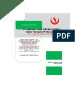Rúbrica TF PP3 Wasc-Abet 39 agil.xlsx