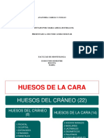 138427680-HUESOS-DE-LA-CARA-pdf-convertido