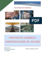 Proyecto Cárnico Agropecuaria El Gaván