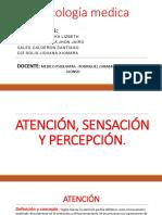 Atencion Expo