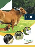 Novarc Veterinary Brochure