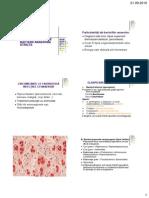 Infectii Anaerobe Stricte