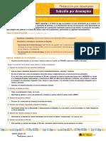 hoja_informativa_subsidios