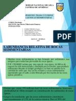 EXPOcomposicion, trama y cuerpos de las rocas sedimentarias.