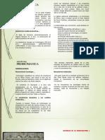 arquitectura-prerromanica (2)