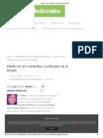 ALFALFA-RICO EN NUTRIENTES Y PURIFICADOR DE LA SANGRE