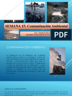 SEMANA 15 - Contaminación Ambiental