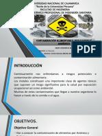 Contaminacion Por CD y As