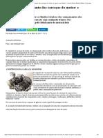 Problemas No Conjunto Das Carcaças Do Motor_ e Agora o Que Fazer_ - Jornal Oficina Brasil _ Motos e Serviços