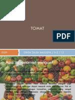TOMAT (prakarya)