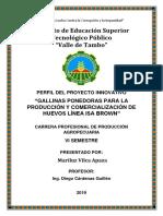 PROYECTO INNOVATIVO GALLINAS PONEDORAS Y PRODUCCIÓN DE HUEVOS