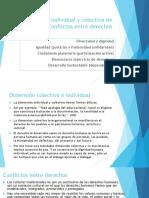 Dimensión individual y colectiva de los DDHH y
