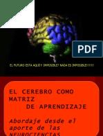cerebromatriz-lauracejas-100903125441-phpapp02