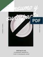 T2_Consumo y su impacto.pdf