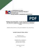 Modelo de Eleccion y Plan de Implementación de Un Proyecto Agricola Para Agricola La REMESA LTDA