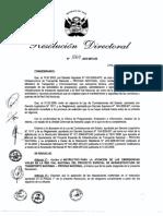 rd_1069-2010  Instructivo para la Atencion de Emergecias Viales PVN.pdf