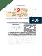TARE PARA LA CASA N°10.pdf
