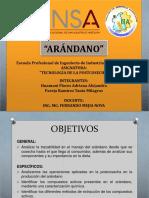 ARANDANO EXPOSICION!.pptx