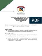Proyecto Histologia correción .pdf