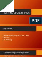 Practicum Report Legal Opinion