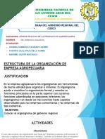 ORGANIGRAMA DEL GOBIERNO REGIONAL