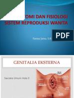 anatomi sistem reproduksi wanita-1