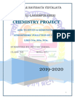 1chemistry project.docx