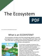 2 Ecosystem 1