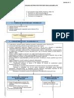 Anexa Nr. 1 Diagrama de Proces PS