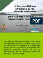 6. Rol de Los Recursos Hidricos-luis Campos