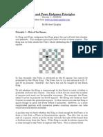 King and Pawn Endgame Principles