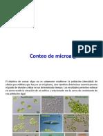 conteo de microalgas