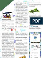 micro y macro economia.docx