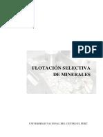 FLOTACIÓN-SELECTIVA-DE-MINERALES-INFORME (1).docx