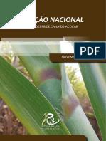 Catalago variedades de cana